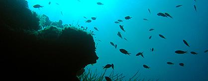 Parga Underwater
